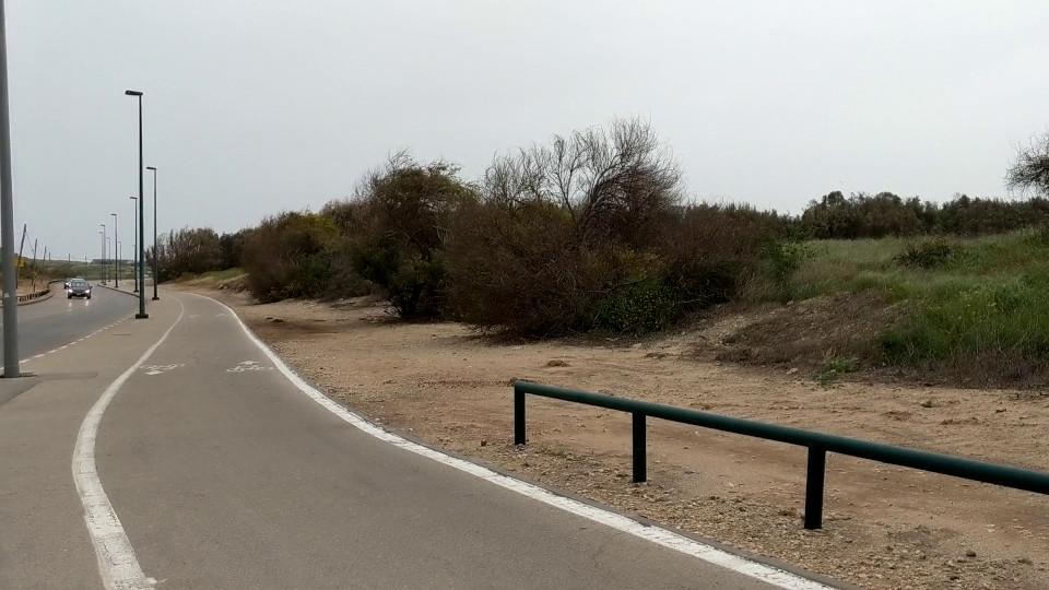 שביל האופניים ברחוב 2040