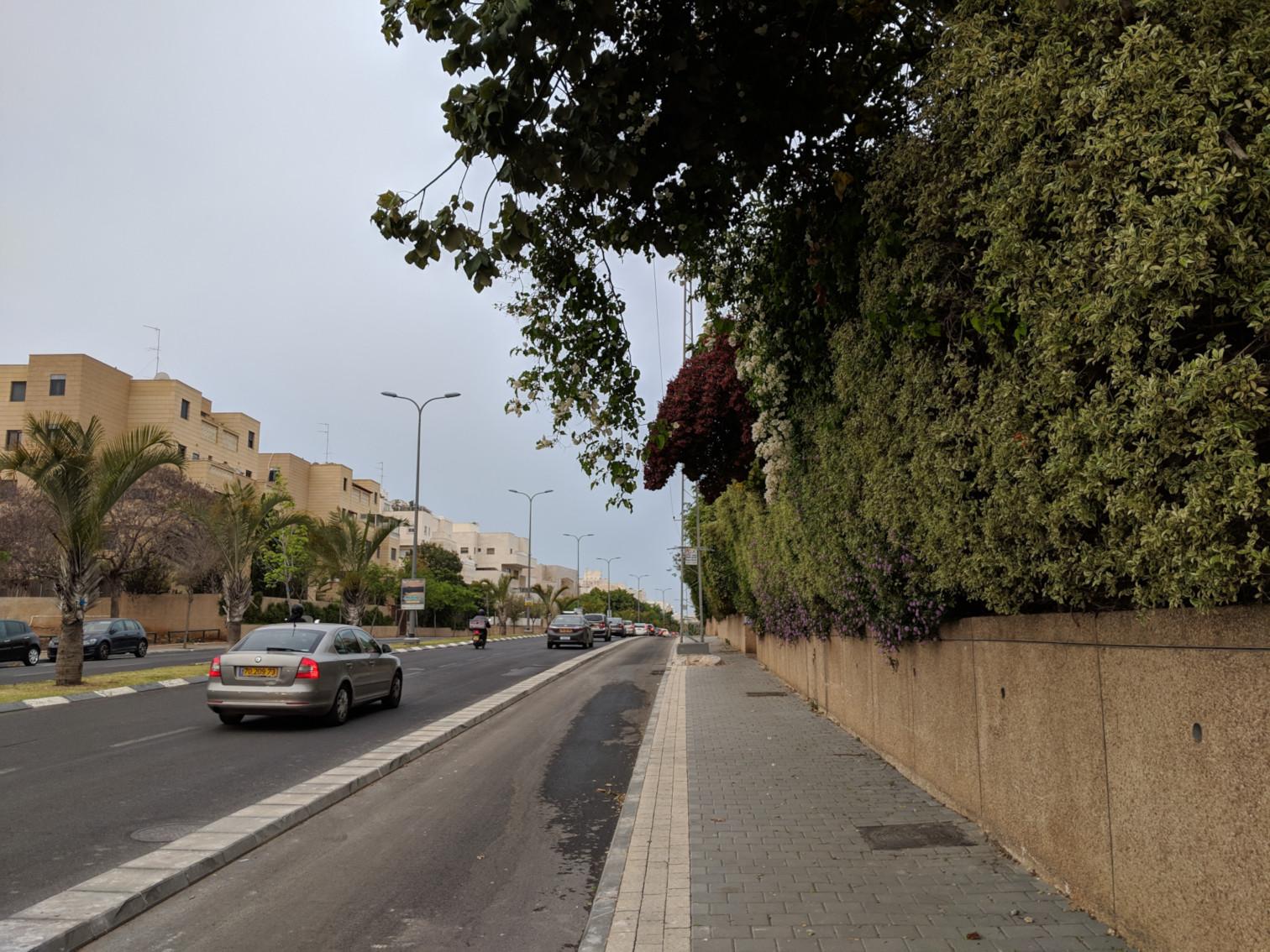 דבורה הנביאה אחרי העבודות - שביל אופניים לתפארת
